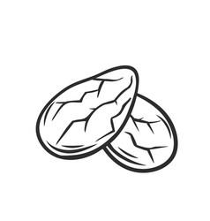 cocoa beans grain outline icon vector image