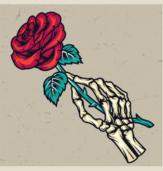 Colorful skeleton hand holding beautiful rose vector