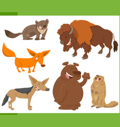 cute wild animal characters set vector image