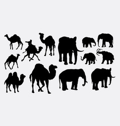 Elephant african wild animal silhouette vector