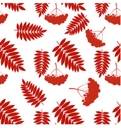 pattern with rowans vector image vector image