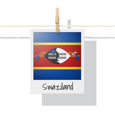 photo of swaziland flag vector image