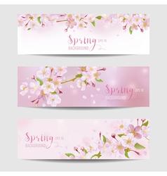 Spring Flower Banner Set - Cherry Blossom Tree vector image