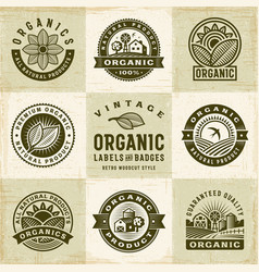 vintage organic labels and badges set vector image