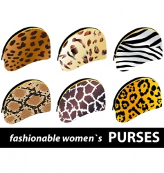 women's purses vector image