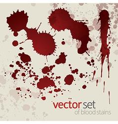 Splattered blood stains set 7 vector image vector image