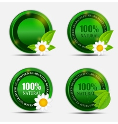 100 Natural Green Label Set vector image