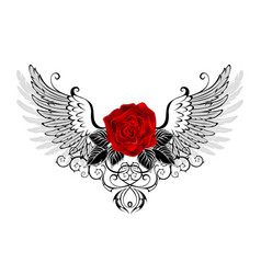 Angel red rose vector
