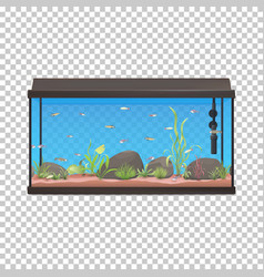 Fish tank aquarium with fishes vector