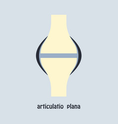 Knee joint health care icon flat vector