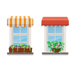 two windows with awnings and flowers in pots vector image