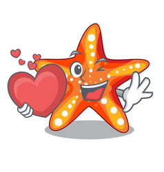 With heart starfish isolated with in the cartoons vector