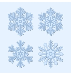 Snowflake Winter Set Isolated on Light Background vector image