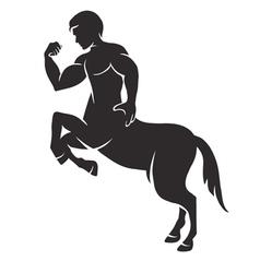 centaur vector image vector image