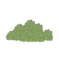 The bush vector