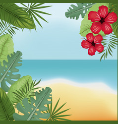 Beauty beach hibiscus palm island vector