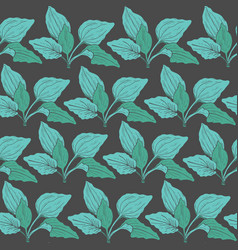 Botanical seamless pattern with green plantain vector