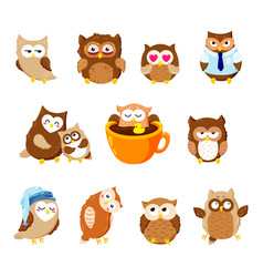 Collection of cute owls cartoon characters vector