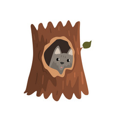 Cute wolf cub sitting in hollow of tree hollowed vector