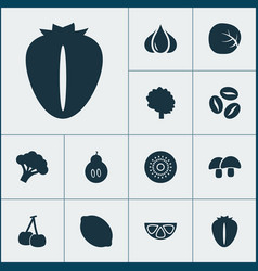 food icons set with white cabbage berry citrus vector image