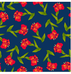 red canna lily on indigo blue background vector image