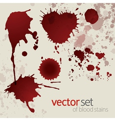 Splattered blood stains set 5 vector image