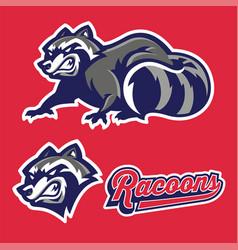 angry racoon mascot set vector image