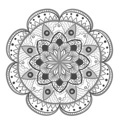 Decorative floral round mandala vector