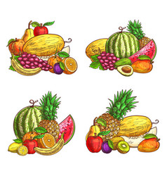 Mix juicy fruits sketch vector