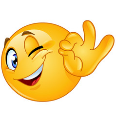 ok sign winking emoticon vector image