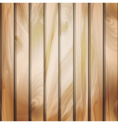 Wall panels with wood detailed texture vector image vector image