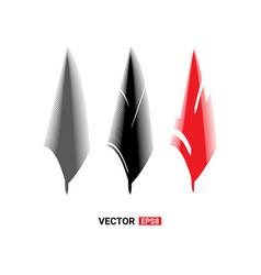 birds feathers icon vector image