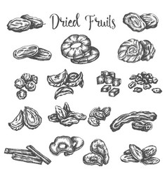 Dried fruits hand drawn healthy vector