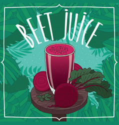 healthy fresh beet juice with root vegetables vector image