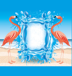 pink flamingos and a splash water vector image