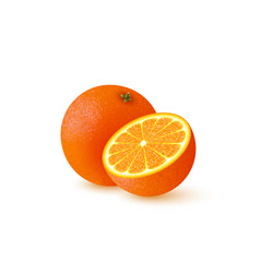 realistic half cut and whole orange vector image