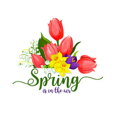 spring holidays tulips flowers bouquet vector image