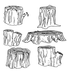 Stump handdrawn set vector
