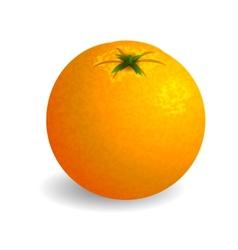 Bright orange on white background vector image