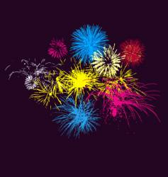 fireworks on night sky vector image vector image