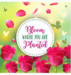spring background bokeh design bloom vector image