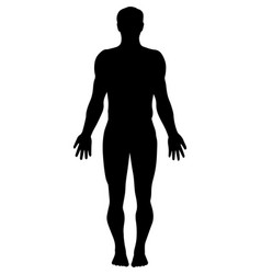 man silhouette vector image