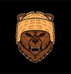 bear angry head vector image