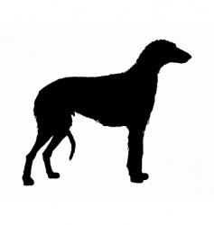 Scottish deerhound vector image vector image