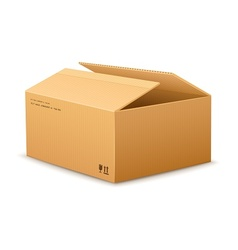 opening cardboard delivery vector image