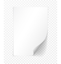 a4 paper with shadow design template vector image