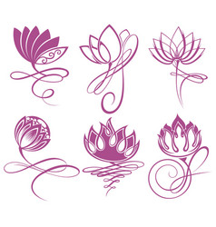 beauty lotus flowers design logo template vector image