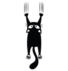 Black cat scratching wall silhouette of vector