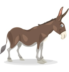 funny donkey cartoon vector image