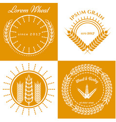 grain ears concept logo design collection vector image vector image